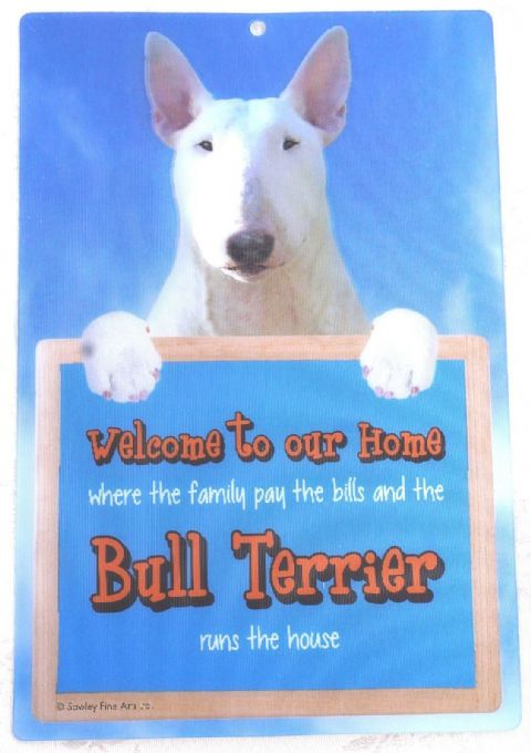 ENGLISH BULL TERRIER WHITE 3D WELCOME SIGN STUNNING EYE CATCHING 23CM X 15CM